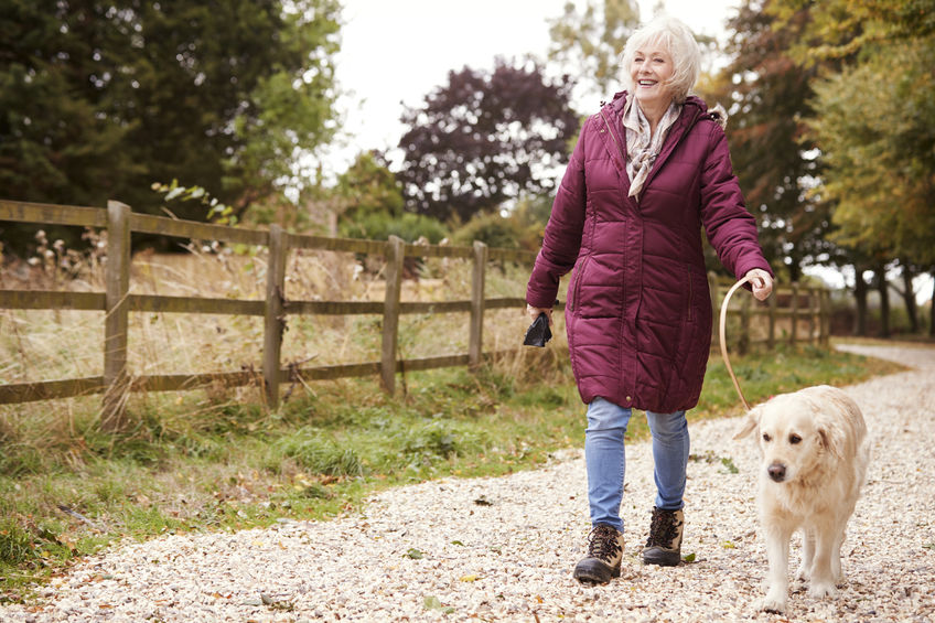 Active Senior Woman On Autumn Walk With Dog On Path Through Countryside - Research Shows Vinpocetine Helps Fight Inflammation
